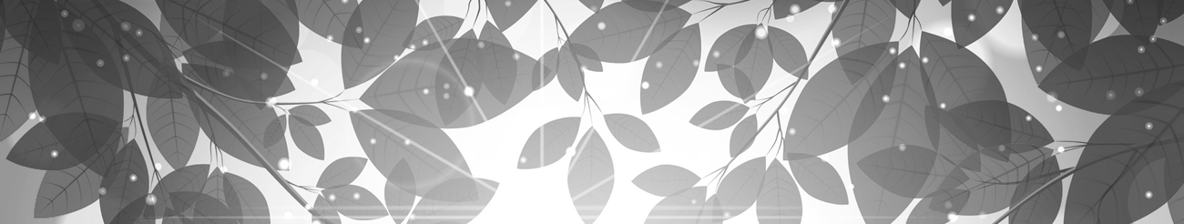 Black and white leaves photo